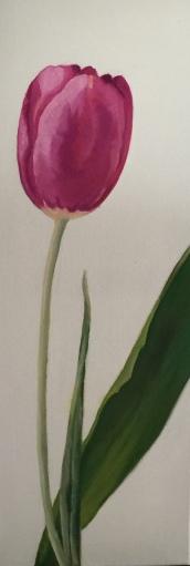 toile-tulipe